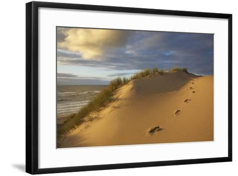 Costal Cliff at the 'Rotes Kliff' (Red Cliff) on the Island of Sylt in the Evening Light-Uwe Steffens-Framed Art Print
