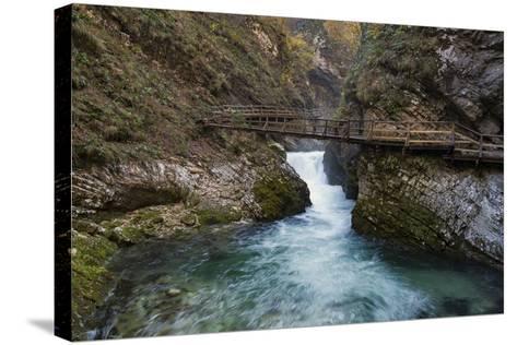 Slovenia, Vintgar Gorge, Triglav National Park-Simone Wunderlich-Stretched Canvas Print