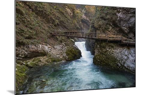 Slovenia, Vintgar Gorge, Triglav National Park-Simone Wunderlich-Mounted Photographic Print