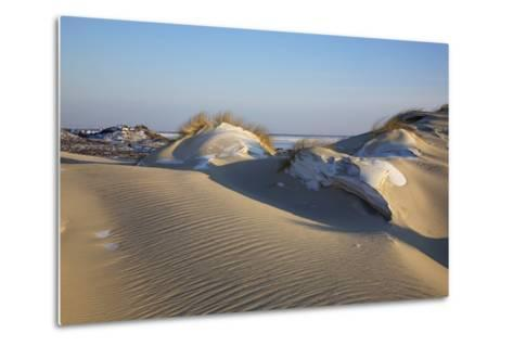 Wintry Dune Landscape Drifting Dune of List on the Island of Sylt in the Evening Light-Uwe Steffens-Metal Print