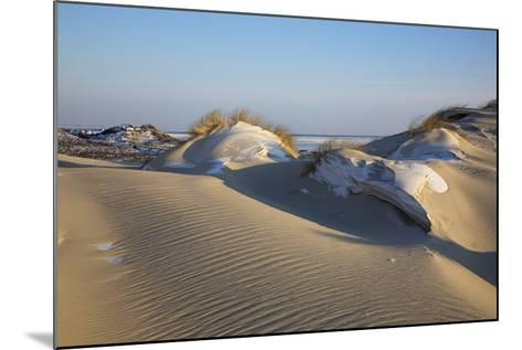 Wintry Dune Landscape Drifting Dune of List on the Island of Sylt in the Evening Light-Uwe Steffens-Mounted Photographic Print