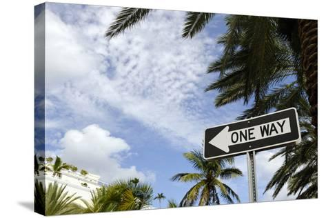 One-Way Street Sign, Collins Street, South Miami Beach, Art Deco District, Florida, Usa-Axel Schmies-Stretched Canvas Print