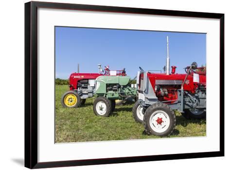 Convention for Classic Tractors, PfaffstŠtten, Lower Austria, Austria, Europe-Gerhard Wild-Framed Art Print