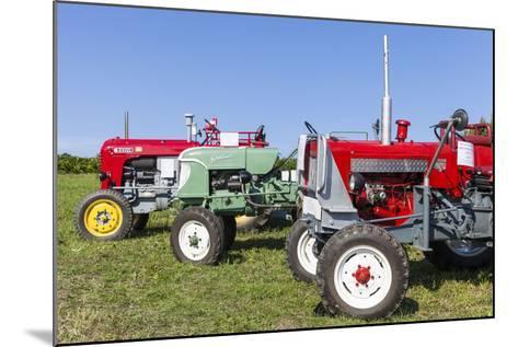 Convention for Classic Tractors, PfaffstŠtten, Lower Austria, Austria, Europe-Gerhard Wild-Mounted Photographic Print