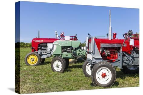 Convention for Classic Tractors, PfaffstŠtten, Lower Austria, Austria, Europe-Gerhard Wild-Stretched Canvas Print