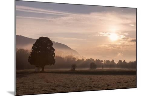 Summer Morning in Carinthia-Simone Wunderlich-Mounted Photographic Print