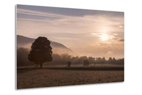 Summer Morning in Carinthia-Simone Wunderlich-Metal Print
