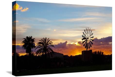 Europe, Spain, Majorca, Palm, Windmill, Dusk, Afterglow-Chris Seba-Stretched Canvas Print