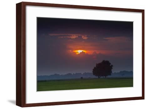 Sunset Above Field with Tree, Dykhausen, Sande, Frisia, Lower Saxony, Germany-Axel Ellerhorst-Framed Art Print