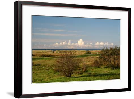 The Baltic Sea, Hiddensee, Heath, Landscape-Catharina Lux-Framed Art Print