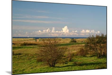 The Baltic Sea, Hiddensee, Heath, Landscape-Catharina Lux-Mounted Photographic Print