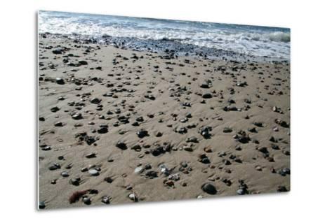 The Baltic Sea, RŸgen, North Beach-Catharina Lux-Metal Print