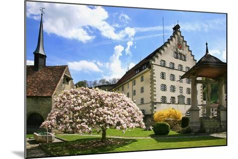 Switzerland, Fribourg on the Sarine River, 'Planche Superieure'-Uwe Steffens-Mounted Photographic Print