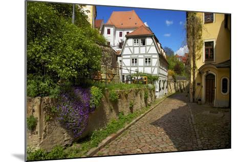 Timber-Frame at the 'Freiheit' in the Old Town of Mei§en-Uwe Steffens-Mounted Photographic Print