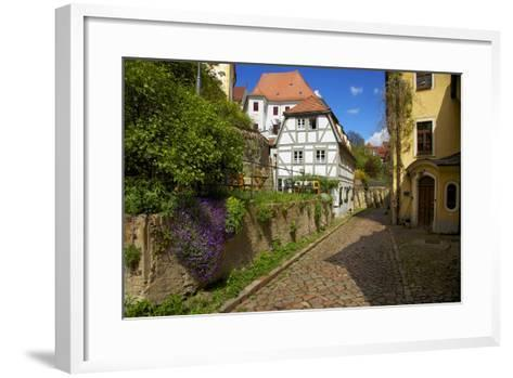 Timber-Frame at the 'Freiheit' in the Old Town of Mei§en-Uwe Steffens-Framed Art Print