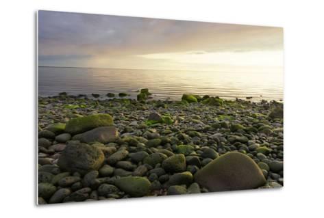 Iceland, Gardskagi, Coast, Stones-Catharina Lux-Metal Print