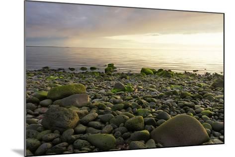 Iceland, Gardskagi, Coast, Stones-Catharina Lux-Mounted Photographic Print