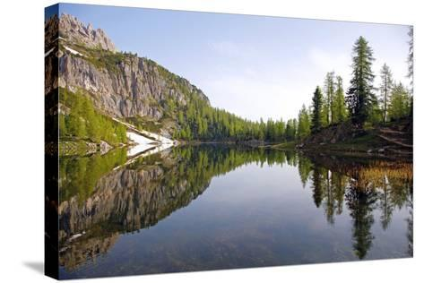 Italy, the Dolomites, South Tyrol, Cortina D'Ampezzo, Lago Di Federa, Trees, Reflection-Alfons Rumberger-Stretched Canvas Print