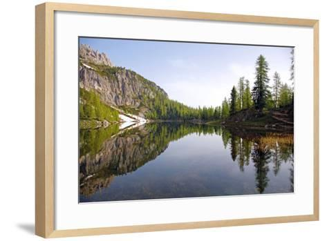 Italy, the Dolomites, South Tyrol, Cortina D'Ampezzo, Lago Di Federa, Trees, Reflection-Alfons Rumberger-Framed Art Print