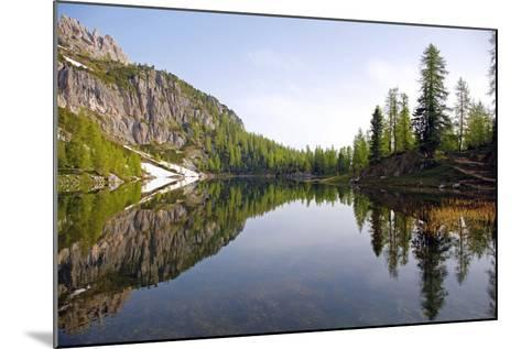 Italy, the Dolomites, South Tyrol, Cortina D'Ampezzo, Lago Di Federa, Trees, Reflection-Alfons Rumberger-Mounted Photographic Print