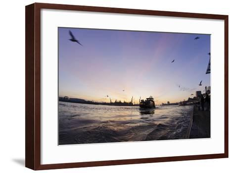Gulls in the Backlight, Harbour Cranes, St Pauli Landing Stages-Axel Schmies-Framed Art Print