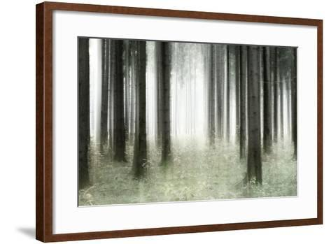 Misty Spruce Forest in Autumn, Abstract Study [M], Colour and Contrast Digitally Enhanced-Andreas Vitting-Framed Art Print