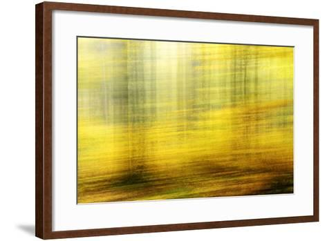 Deciduous Forest in Full Autumn Colours, Abstract Study [M-Andreas Vitting-Framed Art Print