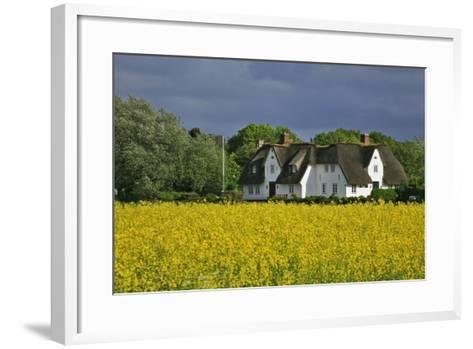 Friesenhof' Behind a Rape Field at 'Bob Terp' (Street) in Archsum (Village) on the Island of Sylt-Uwe Steffens-Framed Art Print