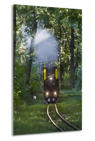 Miniatur Railway in the Prater, Steam Locomotive Da2, Vienna, Austria, Europe-Gerhard Wild-Metal Print