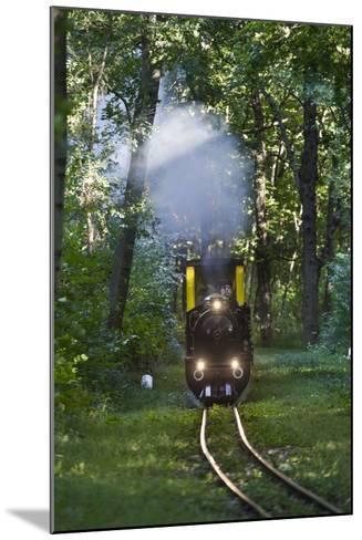 Miniatur Railway in the Prater, Steam Locomotive Da2, Vienna, Austria, Europe-Gerhard Wild-Mounted Photographic Print