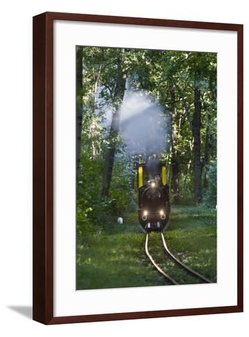 Miniatur Railway in the Prater, Steam Locomotive Da2, Vienna, Austria, Europe-Gerhard Wild-Framed Art Print
