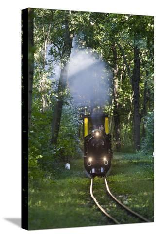 Miniatur Railway in the Prater, Steam Locomotive Da2, Vienna, Austria, Europe-Gerhard Wild-Stretched Canvas Print