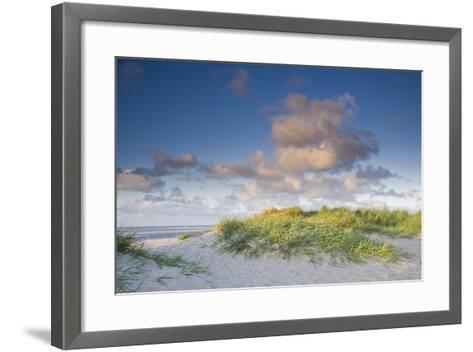 Sand Dune with Beach Grass in the Wattenmeer in the Evening Light, Schillig, North Sea-Axel Ellerhorst-Framed Art Print
