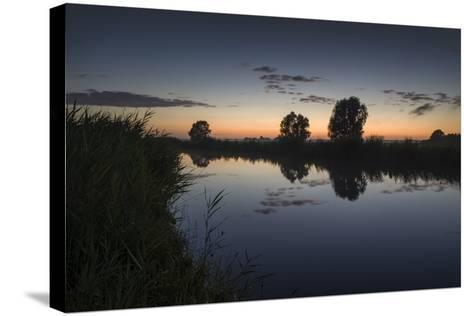 Ashes at the Ems Jade Channel, Evening Light, Gšdens, Sande, Frisia, Lower Saxony, Germany-Axel Ellerhorst-Stretched Canvas Print