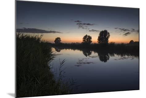 Ashes at the Ems Jade Channel, Evening Light, Gšdens, Sande, Frisia, Lower Saxony, Germany-Axel Ellerhorst-Mounted Photographic Print