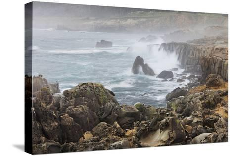 Surf in the Salt Point State Park, Sonoma Coast, California, Usa-Rainer Mirau-Stretched Canvas Print