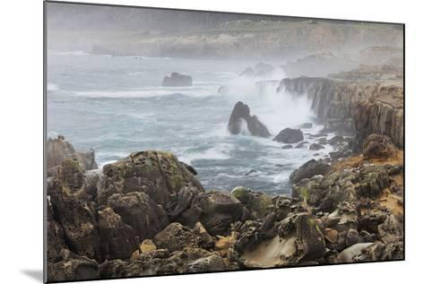 Surf in the Salt Point State Park, Sonoma Coast, California, Usa-Rainer Mirau-Mounted Photographic Print