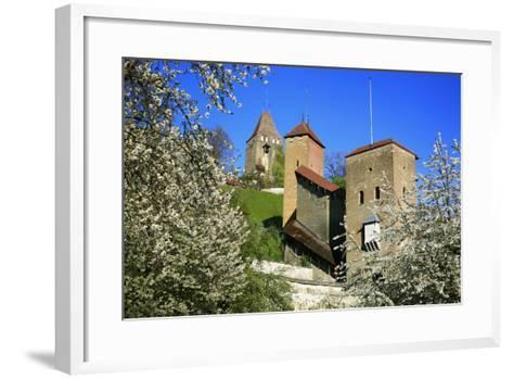 Switzerland, Spring in Fribourg on the Sarine River, Cats Tower and Berne Gate-Uwe Steffens-Framed Art Print