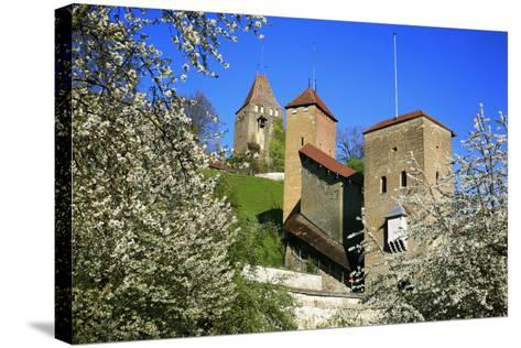 Switzerland, Spring in Fribourg on the Sarine River, Cats Tower and Berne Gate-Uwe Steffens-Stretched Canvas Print