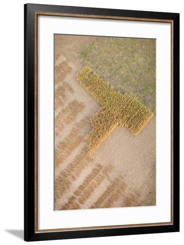 Aerial Shot of Field at Bagan, Myanmar-Harry Marx-Framed Art Print