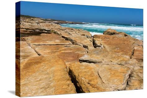 South Africa, the Cape of Good Hope, Rocky Shore-Catharina Lux-Stretched Canvas Print