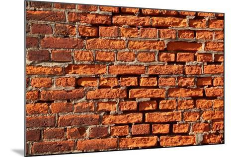 Brick Wall-Catharina Lux-Mounted Photographic Print