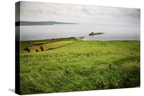 Northern Ireland, Antrim Coast, Glens- Bluehouseproject-Stretched Canvas Print
