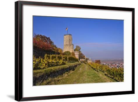 Germany, Rhineland-Palatinate, Palatinate, German Wine Route, Wachenheim, Ruin Wachtenburg-Udo Siebig-Framed Art Print