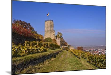 Germany, Rhineland-Palatinate, Palatinate, German Wine Route, Wachenheim, Ruin Wachtenburg-Udo Siebig-Mounted Photographic Print