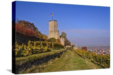 Germany, Rhineland-Palatinate, Palatinate, German Wine Route, Wachenheim, Ruin Wachtenburg-Udo Siebig-Stretched Canvas Print