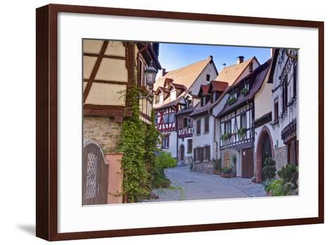 Germany, Baden Wurttemberg, Odenwald (Region), Bergstra?e (Region), Weinheim (Town-Udo Siebig-Framed Art Print