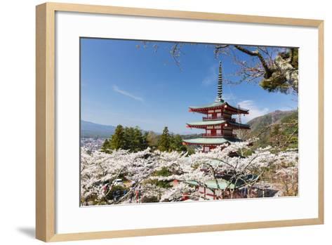 Chureito Pagoda Between Blossoming Cherry Trees, Arakura-Yama Sengen-Koen Park, Chubu Region-P. Kaczynski-Framed Art Print
