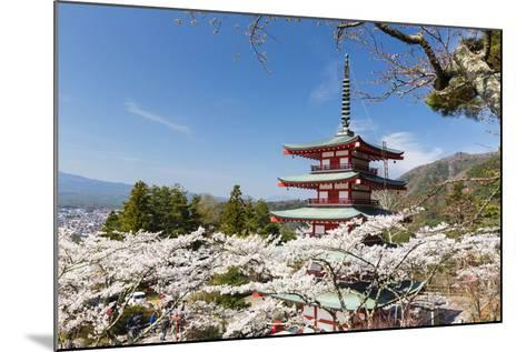 Chureito Pagoda Between Blossoming Cherry Trees, Arakura-Yama Sengen-Koen Park, Chubu Region-P. Kaczynski-Mounted Photographic Print