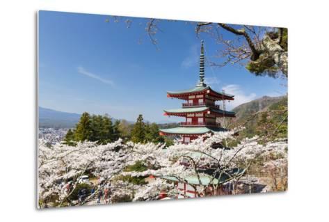 Chureito Pagoda Between Blossoming Cherry Trees, Arakura-Yama Sengen-Koen Park, Chubu Region-P. Kaczynski-Metal Print